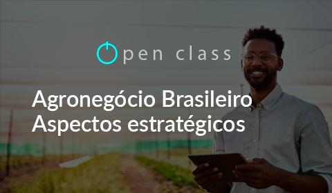 Agronegócio Brasileiro – Aspectos Estratégicos